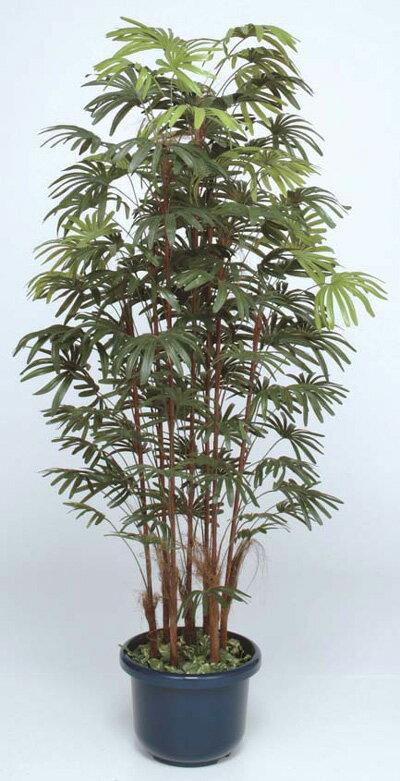 人工植物 シュロチク7本立 鉢付 1.8m GD-128L(21553900)(タカショー)送料無料 観葉植物 人工樹 室内用 インテリア グリーンデコ