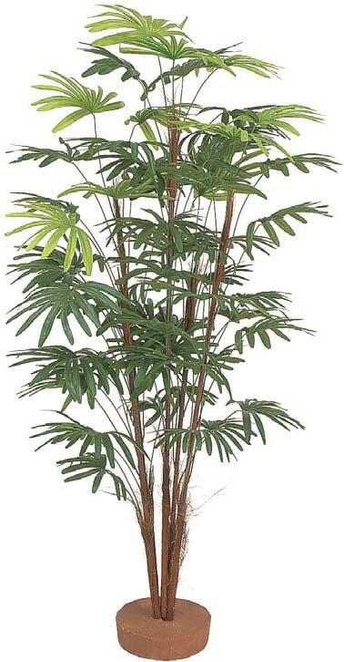 人工植物 シュロチク5本立 鉢無 1.5m GD-125S(21549200)(タカショー)送料無料 観葉植物 人工樹 室内用 インテリア グリーンデコ
