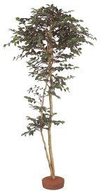 人工植物 和風 サザンカ 鉢無 1.8m GD-135(21639000)(タカショー)送料無料 人工樹 観葉植物 室内用 インテリア グリーンデコ