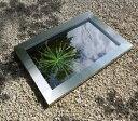 成型池 クアドラ用フレームQUA-FLC3(47250500)(タカショー)送料無料 ウォーターガーデン ガーデニング 庭 園芸