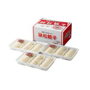 おつまみ 中華 おかず ご当地グルメ お土産 プレゼント 冷凍 ギフト たれ付 浜松餃子 HG-30