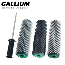 20-21 GalliumWax ロトブラシセット A ソフト ハード ボア ハンドル 電ドリなしケース無しタイプ ガリウム ロトブラシ チューニング チューンナップ