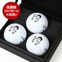 似顔絵ゴルフボール3球プリント楽ギフ_名入れ10P01Mar15