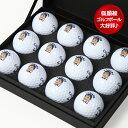 似顔絵ゴルフボール カラー印刷 1ダース楽ギフ_名入れ10P01Mar15