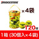 ブリヂストン テニスボール BRIDGESTONE NP 120球(1袋30個入×4袋/1箱) BBA460T