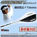 Tabata(タバタ)スイング練習器具藤田コアスイングGV−0233 CORE SWING「ゴルフ練習用品」【あす楽対応】