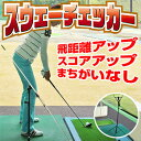 トゥモローカレッジスウェーチェッカー基本セット「ゴルフ練習用品」