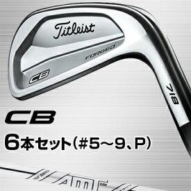 タイトリスト日本正規品CB(718)軟鉄鍛造アイアン6本セット(#5〜9、PW)AMT TOUR WHITEスチールシャフト【あす楽対応】