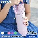 水筒 タケヤフラスク GOCUP ゴーカップ 【520ml /18oz】 子供 ステンレス キッズ 2way おしゃれ 保冷専用 直飲み コッ…