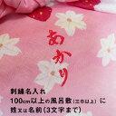 Naire_shisyu_img02c