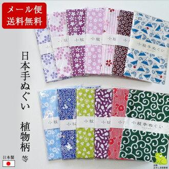 手毛巾日本手毛巾朝颜 (牵牛花) 日本毛巾毛巾擦手巾