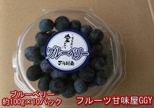 ブルーベリー 約100g×10パック 熊本・愛媛産(JA周桑)クール便発送 万能フルーツ スーパーフード 80サイズ