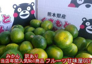 みかん 訳あり 10kg(箱込10kg 9kg+保証分500g)熊本産 ご家庭用 フルーツ 果物【送料無料】(一部の地域を除く)