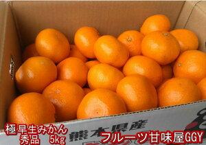 極早生みかん 秀品 1箱5kg サイズL・M・S 熊本産 フルーツ グルメ【送料無料】一部の地域を除く 80サイズ