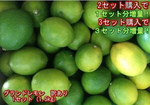【セット】グランドレモン 訳あり 熊本産 マイヤー 国産レモン 1セット(1.5kg)2セット購入で1セットおまけ!3セット購入で3セットおまけ! 60サイズ