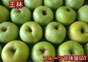 王林 約10kg【約20〜56玉】長野・山形・青森産 オウリン おうりん りんご リンゴ 林檎 グルメ 120サイズ