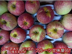 リンゴ 品種おまかせ バラ詰め 訳あり 山形・青森・長野産 1箱 約10kg バラ詰め りんご 林檎