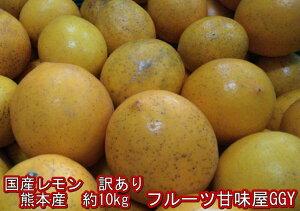 国産レモン 訳あり 熊本産 1箱約10kg(9kg+保証分500g) グランドレモン マイヤー【送料無料】一部の地域を除く