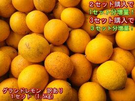 【セット】グランドレモン 訳あり 熊本産 マイヤー 国産レモン 1セット(1.5kg)2セット購入で1セットおまけ!3セット購入で3セットおまけ!