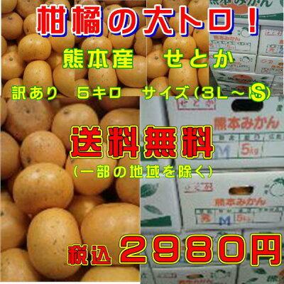 柑橘の大トロ!せとか熊本産熊本みかん訳あり5キロサイズ(3L〜S)【送料無料】一部の地域を除く