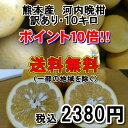 熊本産 河内晩柑 訳あり・10キロ【送料無料】(一部の地域を除く)
