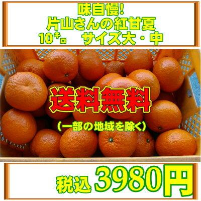 味自慢!片山さんの紅甘夏10キロサイズ大・中【送料無料】一部の地域を除く