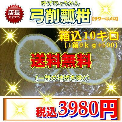 弓削瓢柑【サワーポメロ】10キロ【送料無料】(一部の地域を除く)