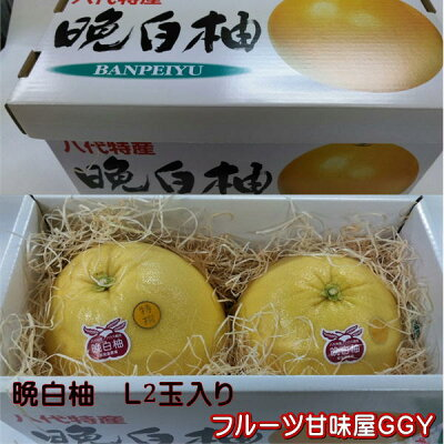 晩白柚化粧箱サイズL2玉入り熊本産【送料無料】一部の地域を除く