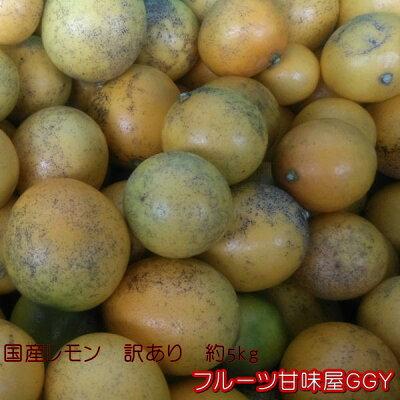国産レモン訳あり熊本産1箱5kg【送料無料】一部の地域を除く