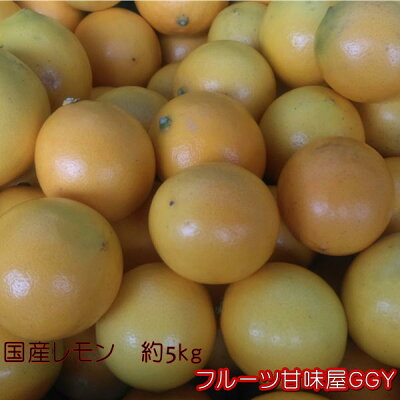 国産レモン秀品サイズ3L〜S熊本産1箱約5kg【送料無料】一部の地域を除く