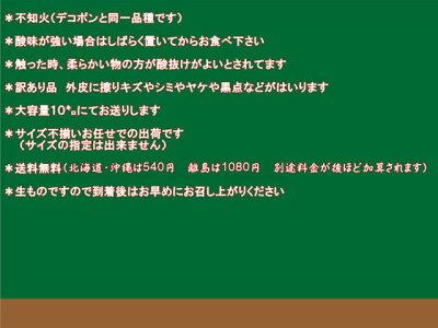 不知火(デコポン)熊本産訳あり10キロ【送料無料】(一部の地域を除く)