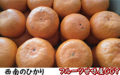 新品種の柑橘西南のひかり訳あり1箱箱込10キロ(9kg+保証分500g)【送料無料】一部の地域を除く