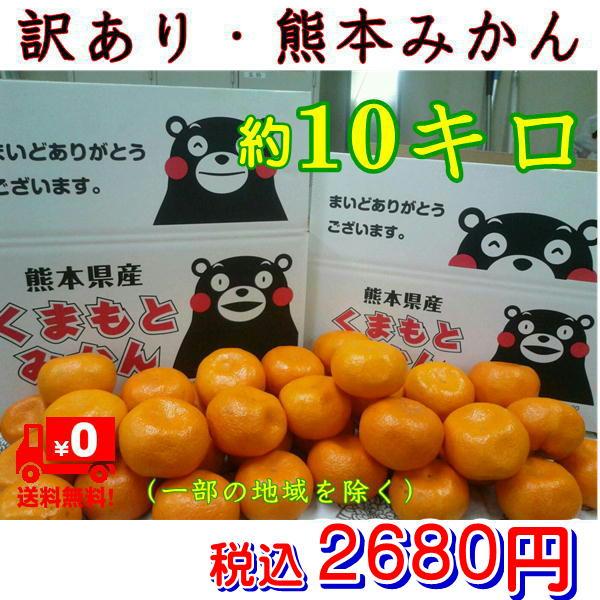 みかん 熊本産 訳あり 箱込10kg(9kg+保証分500g)ご家庭用 フルーツ 果物【送料無料】(一部の地域を除く)