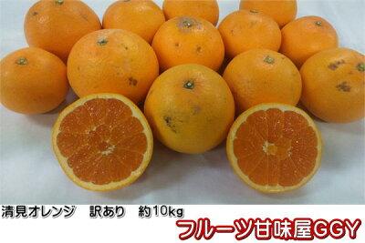 清見オレンジ訳あり熊本産1箱箱込10キロ(9kg+保証分500g)【送料無料】一部の地域を除く