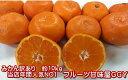 【大赤字企画!】みかん 熊本産 訳あり 10kg(箱込10kg 9kg+保証分500g)ご家庭用 フルーツ 果物【送料無料】(…