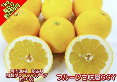 熊本産河内晩柑訳あり・10キロ【送料無料】(一部の地域を除く)