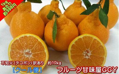 不知火(デコポン)熊本産訳あり10キロ【送料無料】