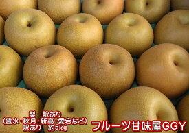 梨 訳あり(豊水・秋月・新高・愛宕など)約5kg(約5〜24玉)熊本産 梨 ナシ なし