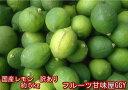 Y/P国産レモン 訳あり 約5kg 熊本産 リスボン マイヤー グランドレモン