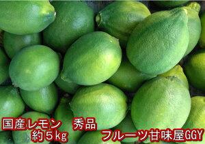 Y/P国産レモン 秀品 サイズ3L〜S熊本産 1箱 箱込約5kg【送料無料】一部の地域を除く