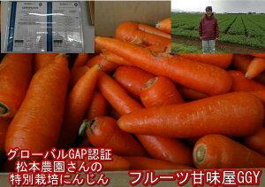 【ご奉仕価格】にんじん 10kg【安心安全 特別栽培農産物】訳あり にんじん約10kg(9kg+保証分500g)無農薬 有機栽培 ジュース用 にんじん生活 人参