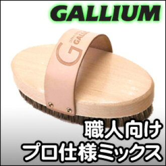 Brush of the [10%OFF]Gallium [gallium] Oval type