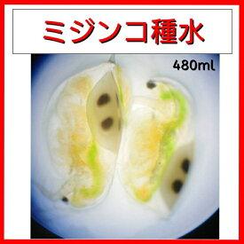 【活き餌】ミジンコ・ミックス480ml(微生物 プランクトン 稚魚用フード 餌)