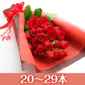 【送料無料】市場直送!感動のバラ花束スリムタイプ【1本160円20〜29本・本数指定できます】【バラ 花束 薔薇 薔薇の花束 バラの花束 赤ピンク 誕生日 記念日 クリスマス プレゼント】