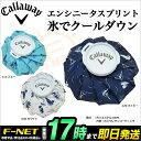 2017年モデル キャロウェイ ゴルフ Callaway 7186501 エンシニータスプリント氷嚢(ひょうのう/氷のう)アイスバッグ
