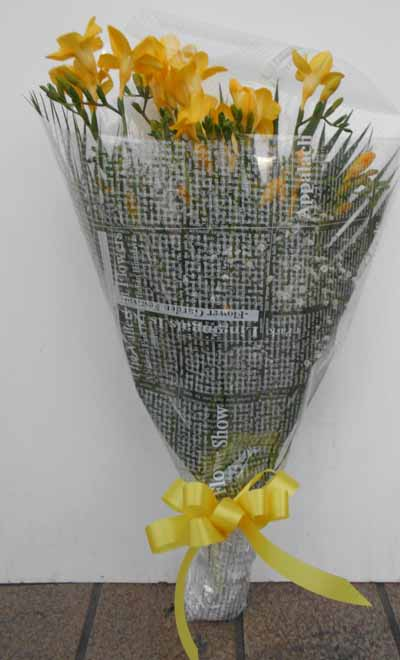 春の訪れを黄色のフリージアとカスミソウの花束 20本入り  送料無料ギフト!!