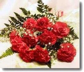 赤のカーネーションの花束10本 送料無料ギフトです