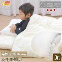 【日本製】アースダウン無地 ナチュラル羽毛掛け布団  ジュニアサイズ ニューゴールドラベル(TCNDJ)532P26Feb16【…
