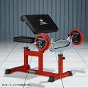 カールベンチ−TRUST / 上腕筋 上腕二頭筋 トレーニング 筋トレ プリーチャーカール_バーゲン特価