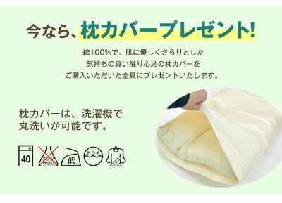 ストレートネック枕日本製安眠枕枕カバー付高さ調整洗える43×63パイプネックフィット枕かため柔らかい横向き横寝首ネック頚椎まくらピロー国産快眠枕高め低めネックピローギフト